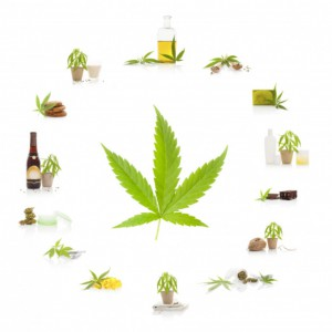 Marijuana leaf and marijuana products, CannaLinq Cannabis Legal News Blog