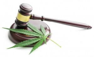 cannabis leaf and judge gavel: CannaLinq Cannabis Legal News Blog